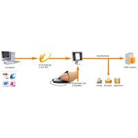 Evolis signoSign/2 Software zur konformen Signierung von Dokumenten, Full-Upgrade Lizenz, 1 Arbeitsplatz, Zeitraum: unbegrenzt, passend für: Sig100, S